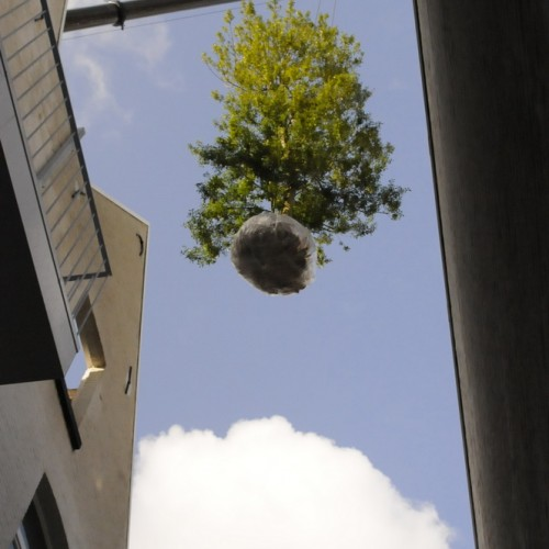 planten van een grote struik met grote kraan in stadstuintje in Mechelen