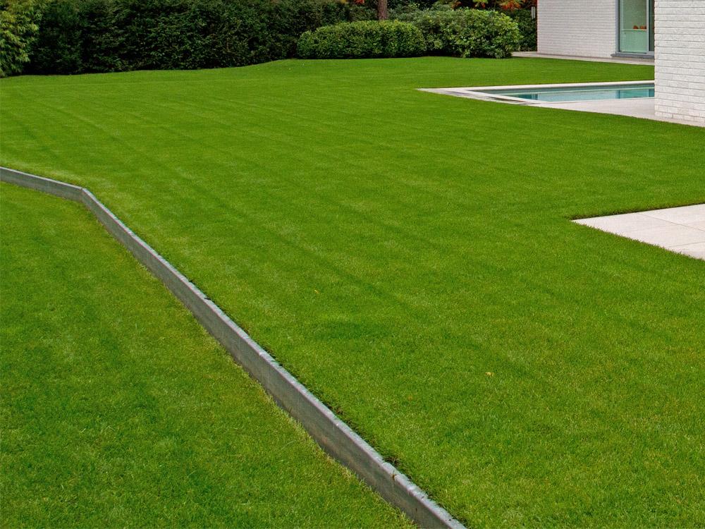 grasdetail